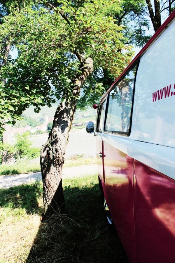 2013-06-22 Sonnenwende in der Wachau – 110 Kopie