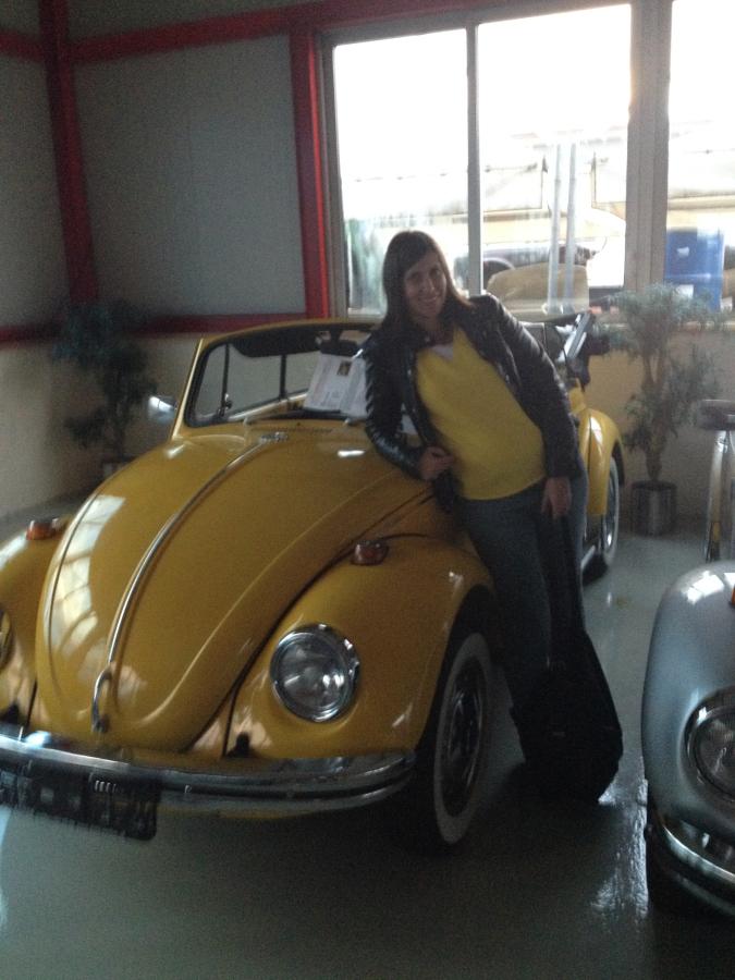 VW Käfer Sunny und SooSoo