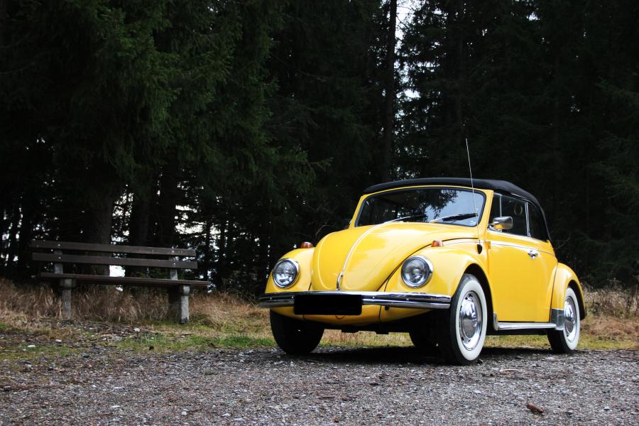 VW Käfer Sunny