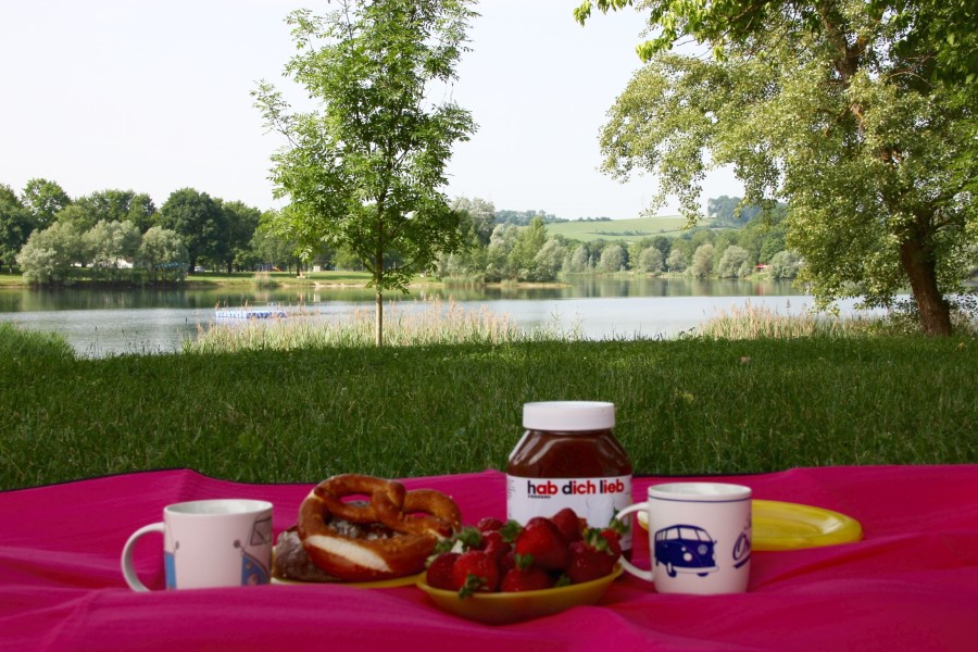 soosoo_picknicken_pichlingersee5